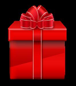 Holiday Gifts Seniors